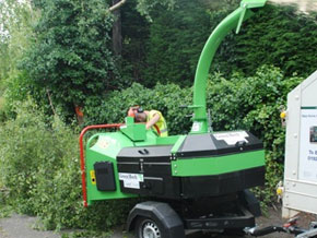 Greenest Wood Chipper